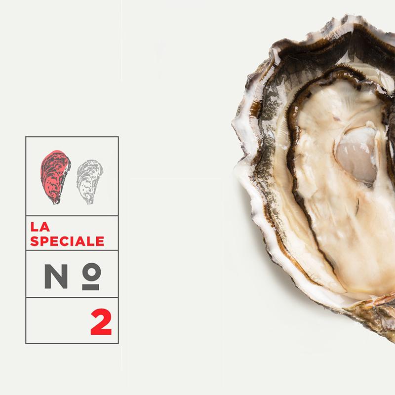Huître spéciale - Calibre n°2 - PRAT-AR-COUM - Carantec